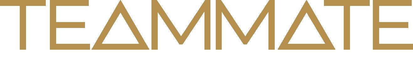 logo-nav-big